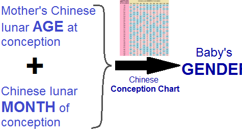How to Conceive a Baby Girl using Chinese Calendar